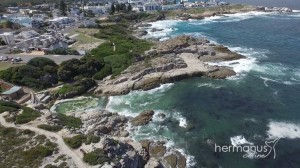 Hermanus-Fickspool02