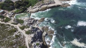 Hermanus-Fickspool03