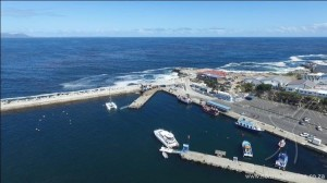 hermanus-newharbour