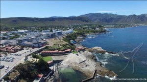 hermanus-newharbour03
