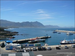 hermanus-photos11