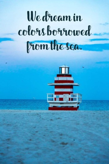 beach-dreams-beach-quotes
