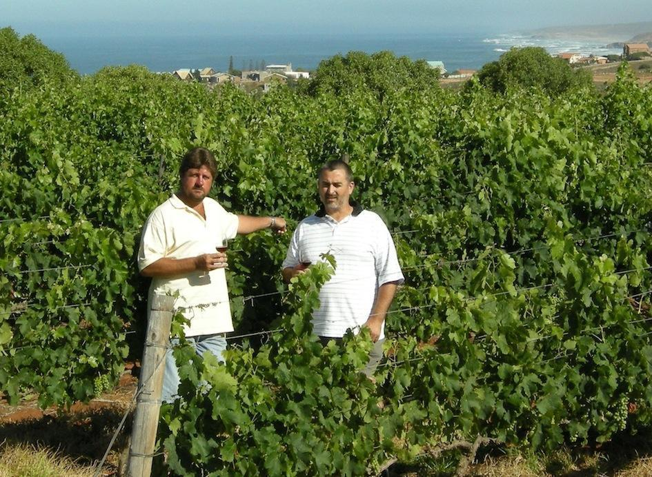 Jan Ponk van Zyl and Wynand Hamman in the Fryers Cove vineyards