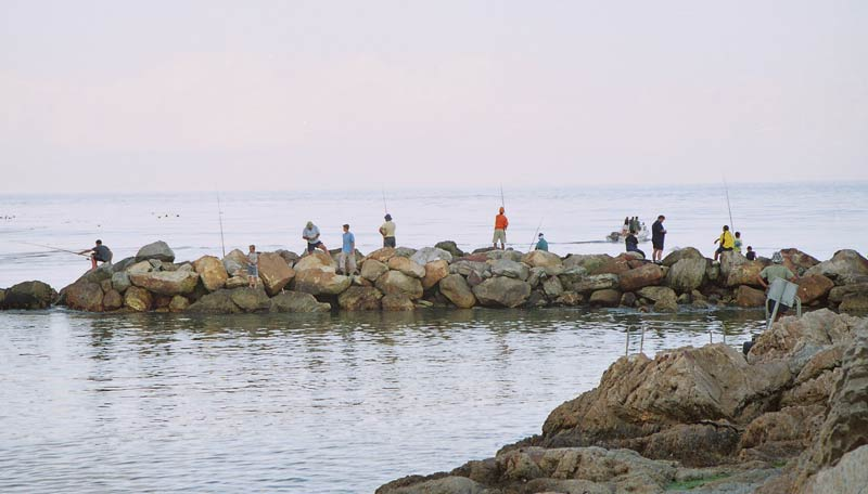 harbour fishing at Betty's bay