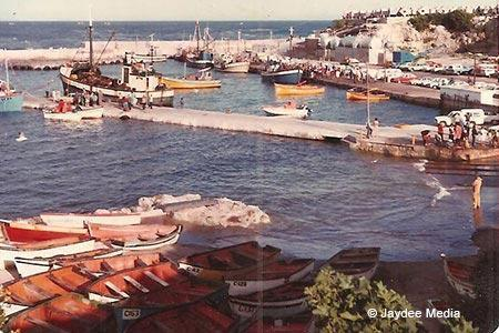 new harbour 1981 in Hermanus