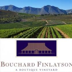 Bouchard Finlayson Boutique Vineyard (Hermanus)