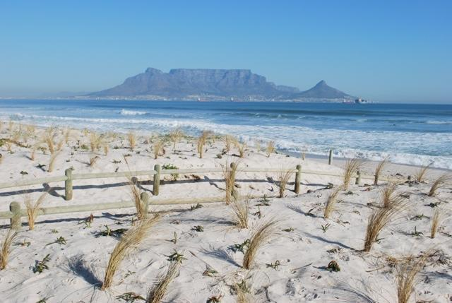 What global warming could mean for sea butterflies and other marine creatures in the Cape Whale Coast Hope Spot