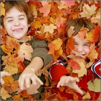 Why do leaves change colour in autumn?