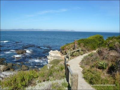 The famous Hermanus Cliff Path