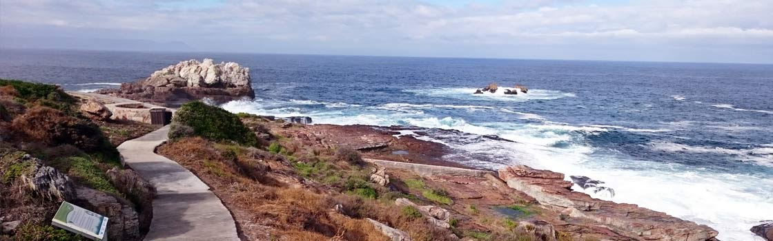 Hiking in and around Nature Reserves in Hermanus
