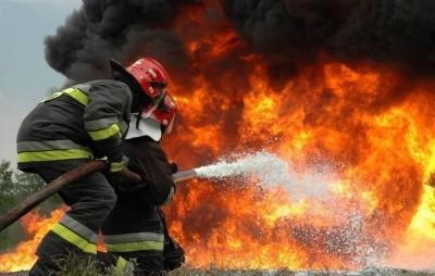 Wild-fires cause 'severe devastation' in Knysna. What is the origin of this disaster?