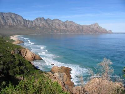 The Cape Whale Coast Hope Spot is an unforgettable experience