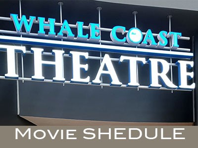 See what's showing this week at the Whale Coast Theatre in Hermanus
