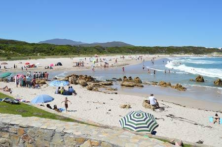 Visit one of the Beaches in Hermanus