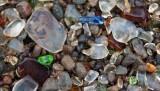 What is a sea glass beach?
