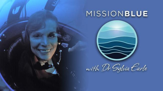 Reminiscences of Dr Allan Heydorn of diving with Dr Sylvia Earle
