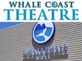 See what's showing at the Whale Coast Mall Theatre in Hermanus