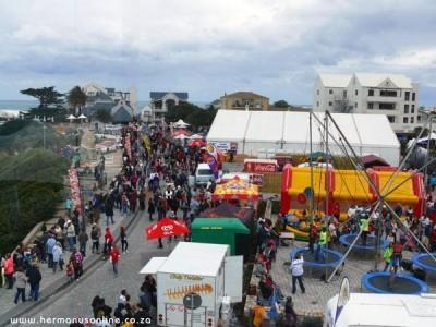 Hermanus gets ready for whale of a time