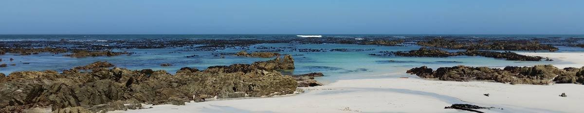Cape Whale Coast Hope Spot