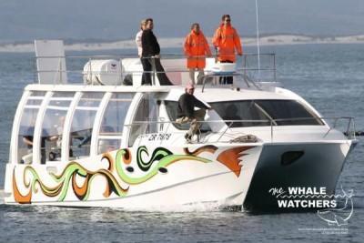 Whale Watching in Hermanus - Press releasse: Indaba 2015